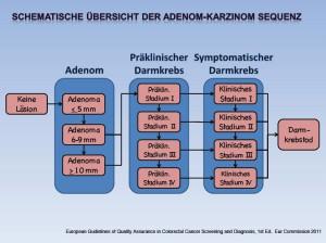 Schematische Übersicht der Adenom-Karzinim Sequenz (Anklicken für größere Ansicht)
