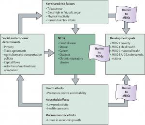 Abb. 3 Soziale und ökonomische Determinanten von  non-communicable diseases (NCDs)